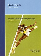 Human anatomy & physiology : study guide