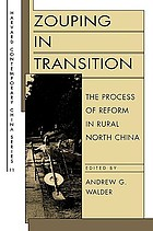 Zouping in transition : the process of reform in rural North China