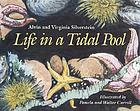 Life in a tidal pool