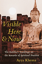 Visible here and now : the Buddha's teachings on the rewards of spiritual practice