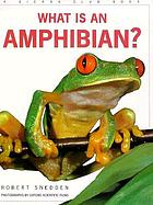 What is an amphibian?
