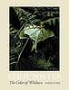 Eliot Porter : the color of wildness