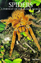 Spiders : a portrait of the animal world