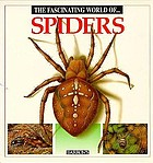 The fascinating world of spiders