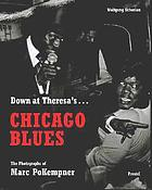 Down at Theresa's-- : Chicago Blues : the photographs of Marc PoKempner