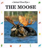 The moose : gentle giant