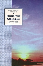 Present fresh wakefulness : a meditation manual on nonconceptual wisdom