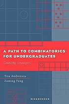 A path to combinatorics for undergraduates : counting strategies