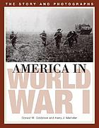 America in World War I : the story and photographs