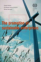 The promotion of sustainable enterprises