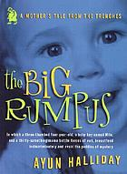 The big rumpus : a mother's tale from the trenches