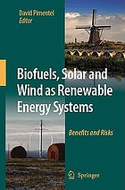 Biofuels, solar and wind as renewable energy systems : benefits and risks