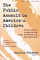 The public assault on America's children : poverty, violence, and juvenile injustice