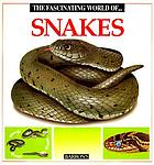 The fascinating world of snakes
