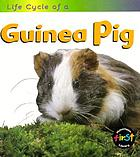 Life cycle of a guinea pig