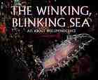 The winking, blinking sea : all about bioluminescence