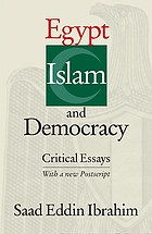 Egypt, Islam, and democracy critical essays, with a new postscript