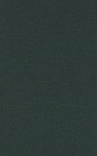 Trees, truffles, and beasts : how forests function