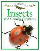 Insects and crawly creatures