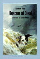 Rescue at sea!