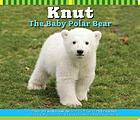 Knut, the baby polar bear