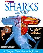 A look inside sharks and rays