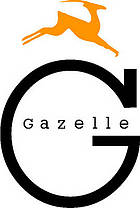 Government at the dawn of the 21st century