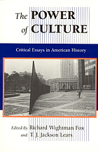 The Power of culture : critical essays in American history