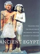 Ancient Egypt : treasures from the collection of the Oriental Institute, University of Chicago