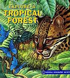 Explore a tropical forest
