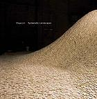 Maya Lin : systematic landscapes