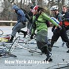 New York Alleycats