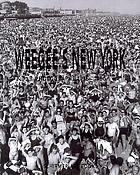 Weegee's New York : 335 photographs 1935-1960