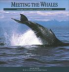 Meeting the whales : the equinox guide to giants of the deep
