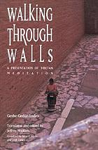 Walking through walls : a presentation of Tibetan meditation