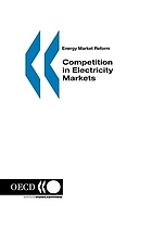 Competition in electricity markets