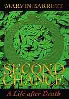 Second chance : a life after death