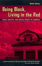 Being Black, living in the red : race, wealth, and social policy in America
