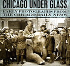 Chicago under glass : early photographs from the Chicago daily news