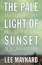 The pale light of sunset scattershots and hallucinations in an imagined life