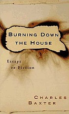 Burning down the house : essays on fiction