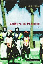 Culture in practice : selected essays