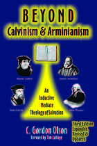Beyond Calvinism & Arminianism : an inductive, mediate theology of salvation