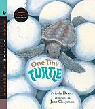 One tiny turtle
