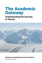 The academic gateway : understanding the journey to tenure
