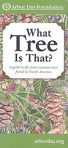What tree is that? : a guide to the more common trees found in North America