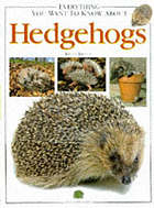 Everything you wanted to know about hedgehogs