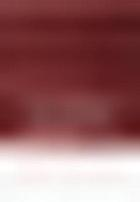 The permanent International Criminal Court : legal and policy issues