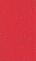 The accidental teacher : life lessons from my silent son : an autism memoir