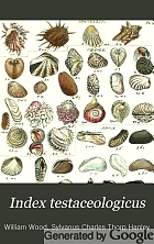 Index testaceologicus, an illustrated catalogue of British and foreign shells, containing about 2,800 figures accurately coloured after nature,